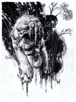 Man-Thing by RobertHack