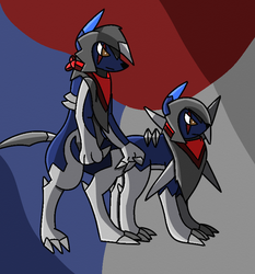 Midnight and Normal Wolf by Wolf-The-Absol
