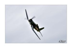 Corsair. by anjules