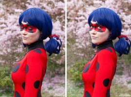Miraculous Ladybug portrait by MariesLife