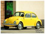 The Yellow Bug by TheMan268