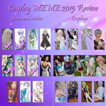 Cosplay Review 2015 by Mokuyo