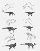 Six Duck-Billed Hadrosaurs by briankroesch