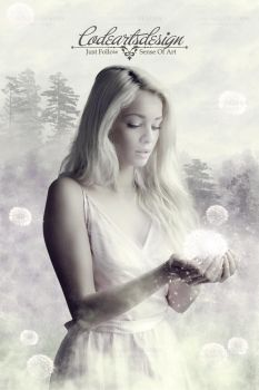 == DANDELIONS == by codeartworks