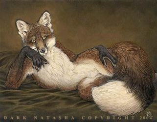 Red Fox by darknatasha