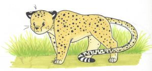 Corgi Cheetah by bluestarproduction