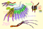 MLP: Pegasus Wing Study by Wolframclaws