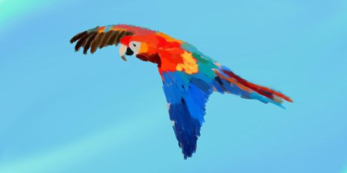 Parrot by ChristopherBoland