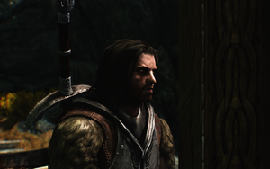 Farkas: The Shield Brother by AlleyneTheElf
