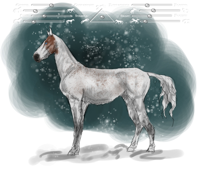 SFS's Snow White   ID: ZM0257 by FluffyPinkHorses