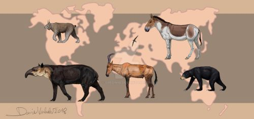 An animal for each continent by Gredinia