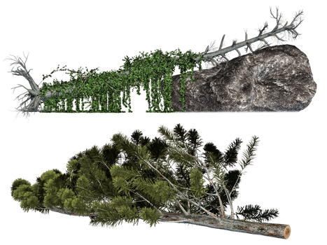 Fallen Trees 01 PNG Stock by Roy3D