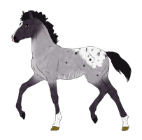 N3001 Padro Foal Design for DarkestNation by casinuba