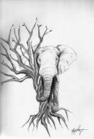 The Elephant by Th3Pr0f355ion41