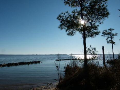 Jamestown Island Black Point Cove by ecfield