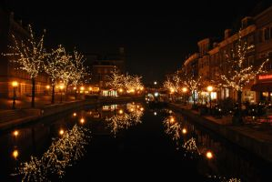 Canals of Leiden by Swaal