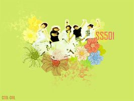 SS501 by cool-girl-92