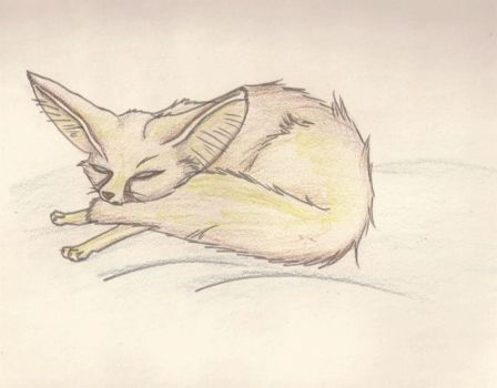Don't wake the fennec! by Inspired-daydream