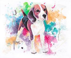 watercolor beagle by Flyinfrogg