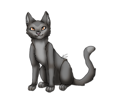 My first Digital art-Cat by AuroreMaudite09