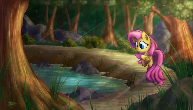 A Pond in the Woods by Bobdude0