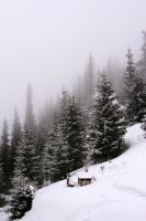 Romania in winter by iacobvasile
