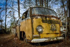 Shaggy Wagon by FabulaPhoto