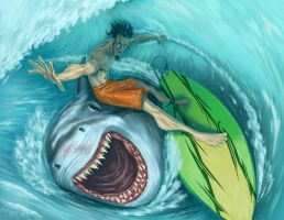 Surfing with the enemy by tedkeys