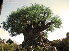 Tree of Life by Sizalle
