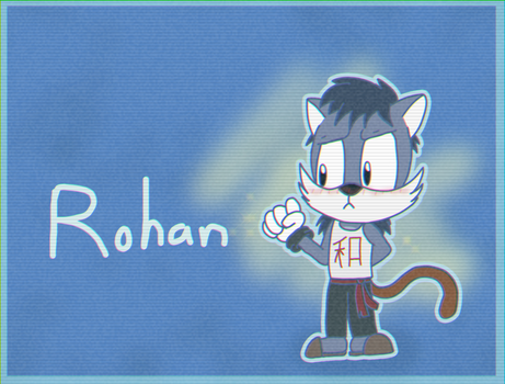 NEW SONIC OC: Rohan (Blitzer's Brother) by SupremeKhi