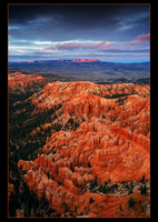 Last Light in Bryce by narmansk8