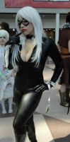 NYCC'12 Black Cat-C I by zer0guard