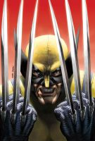 Wolverine painted version by caiocacau