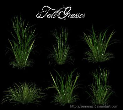 3D Tall Grasses by zememz