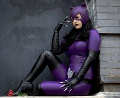 Purple Catwoman Cosplay Costume by NerdySiren