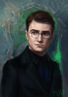 Harry Potter by Maria-Hideki