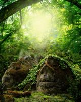 Rock Face Fantasy Background FGM by FairieGoodMother