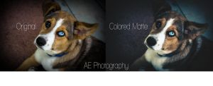 Colored Matte Freebie by Adkins-Photography