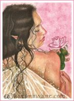 Fairy Rose- ACEO by Katerina-Art