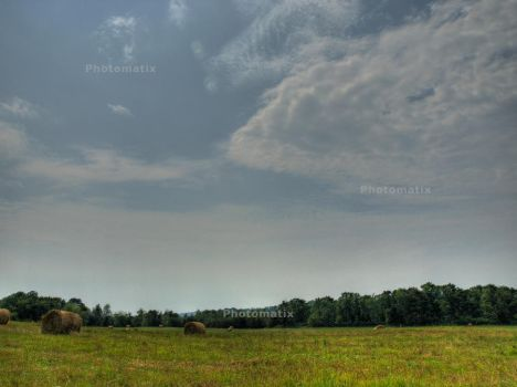 Field HDR by Artist-A