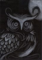 The Owl and the Moon by DreamingOwls