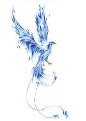 Blue Phoenix #2 by GisaPizzatto