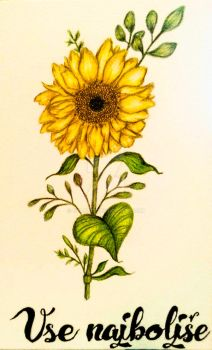 Sunflower by Eva0707