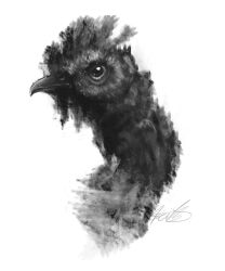 Was a Blob - is a Chicken by Kuvari