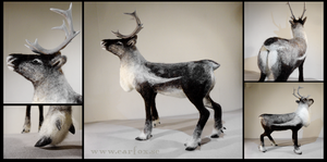 Needle felted reindeer by earfox