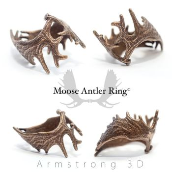 Moose Antler Ring by electrofilms