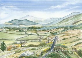 Glencree Valley, County Wicklow, Ireland by SuzanneHole