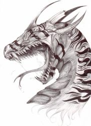 Dragon Portrait by Teggy