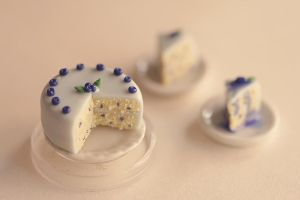 Miniature Blueberry Cake by MyPetiteCakes