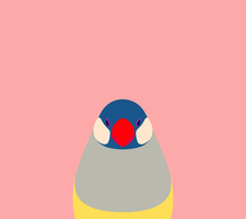 Pink Java Sparrow Wallpaper for Android by birnimal